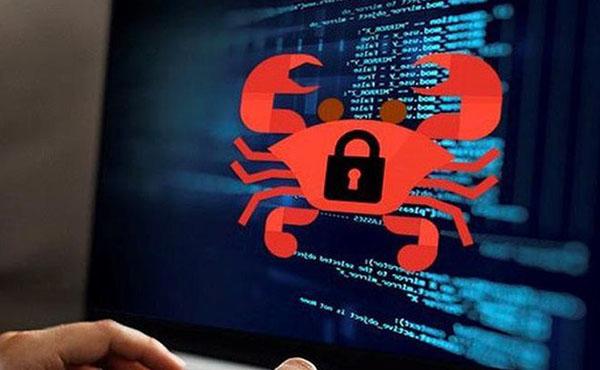 Phần mềm quản lý miễn phí rất dễ bị virus tấn công